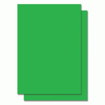 Fluorescent Color Label Sticker - A4 size - 100 sheets - Green (Item No: C01-05 GR)